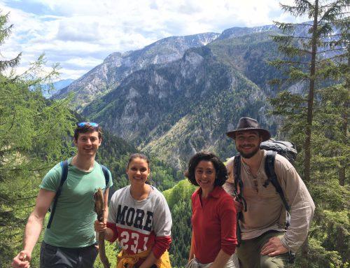 24 to 25 June: Explore Austria's Woods, Rivers & Mountains